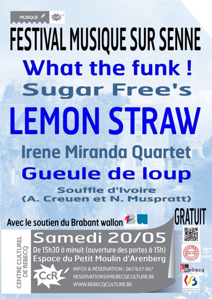 20.05.2017 - Festival Musique Sur Senne intérieur Petit Moulin Chanson