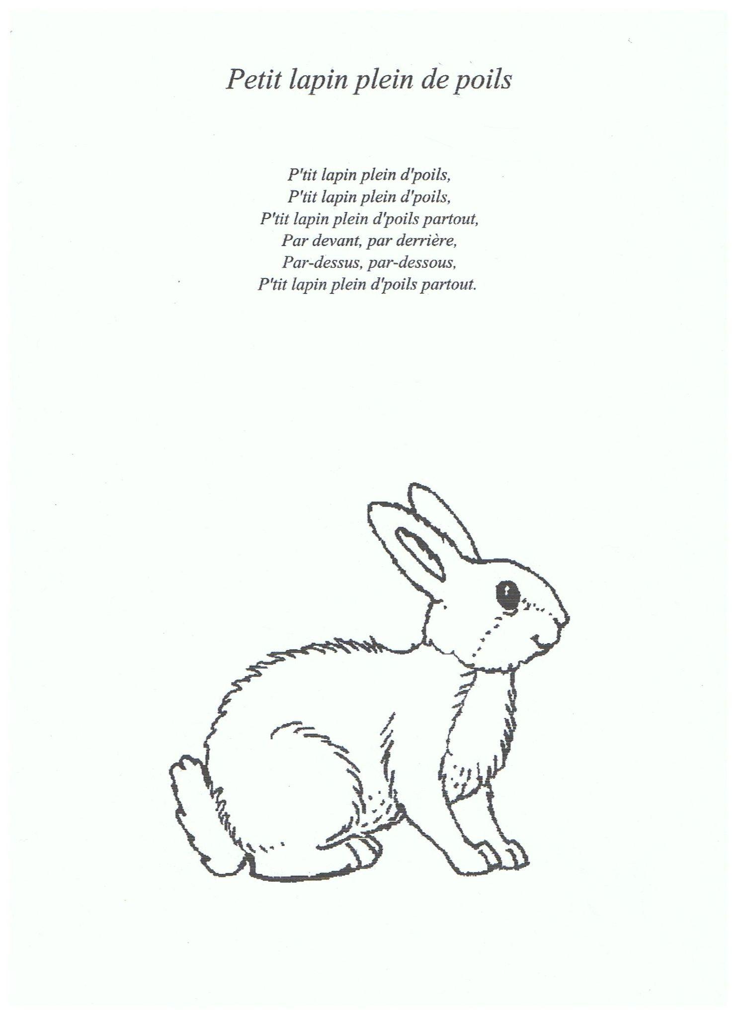 35 Petit Lapin Plein De Poils - Photo De 9.3 - Chansons Et concernant Chanson Enfant Lapin