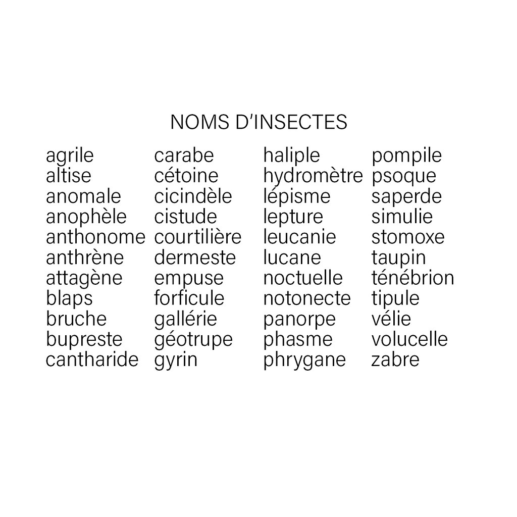 50/365 Liste | Noms D'insectes. Etonnant, N'est-Ce Pas ? Agr dedans Les Noms Des Insectes