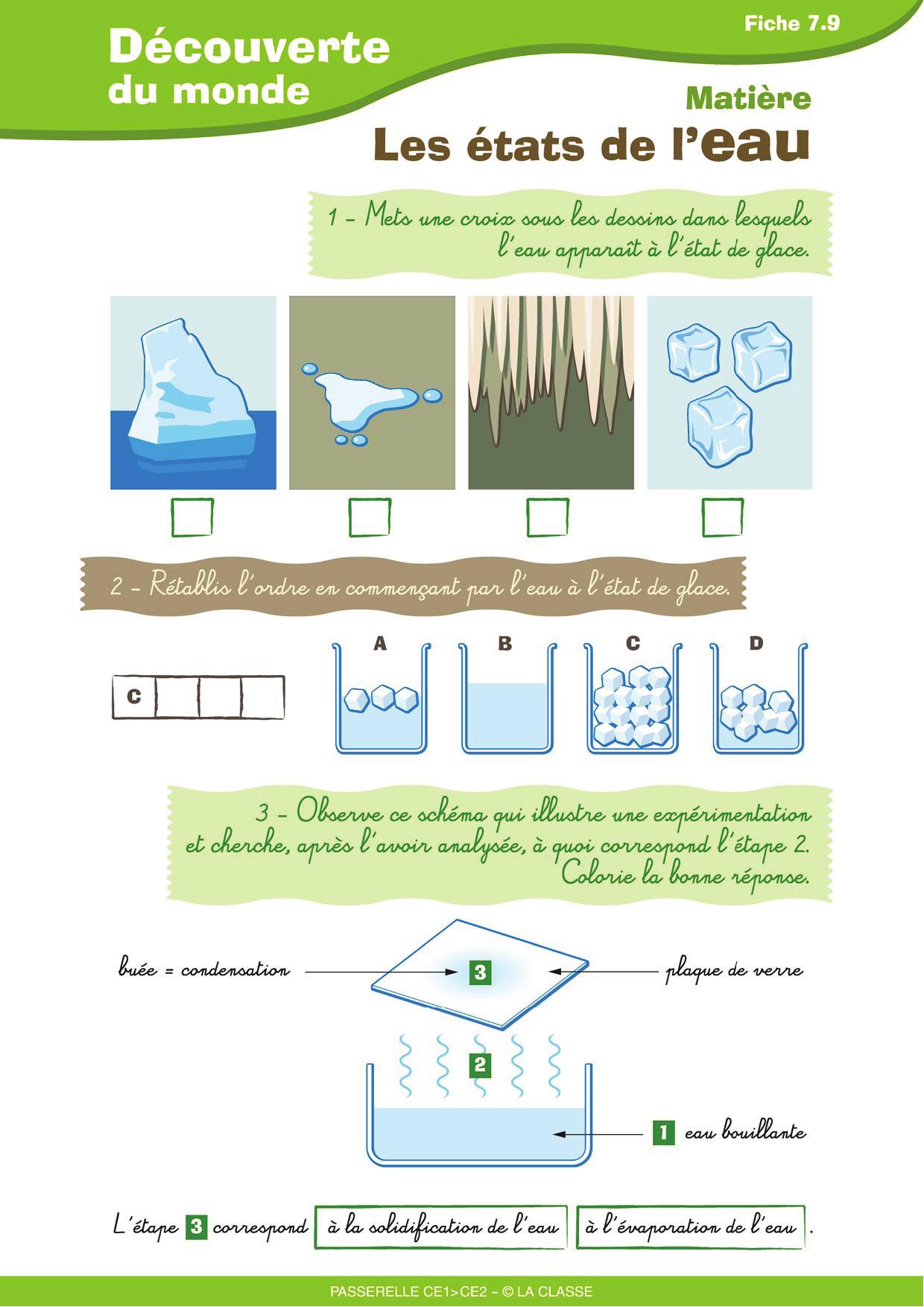 71 Meilleures Images Du Tableau Ecole Sciences | Science encequiconcerne Leçon Respiration Cm1
