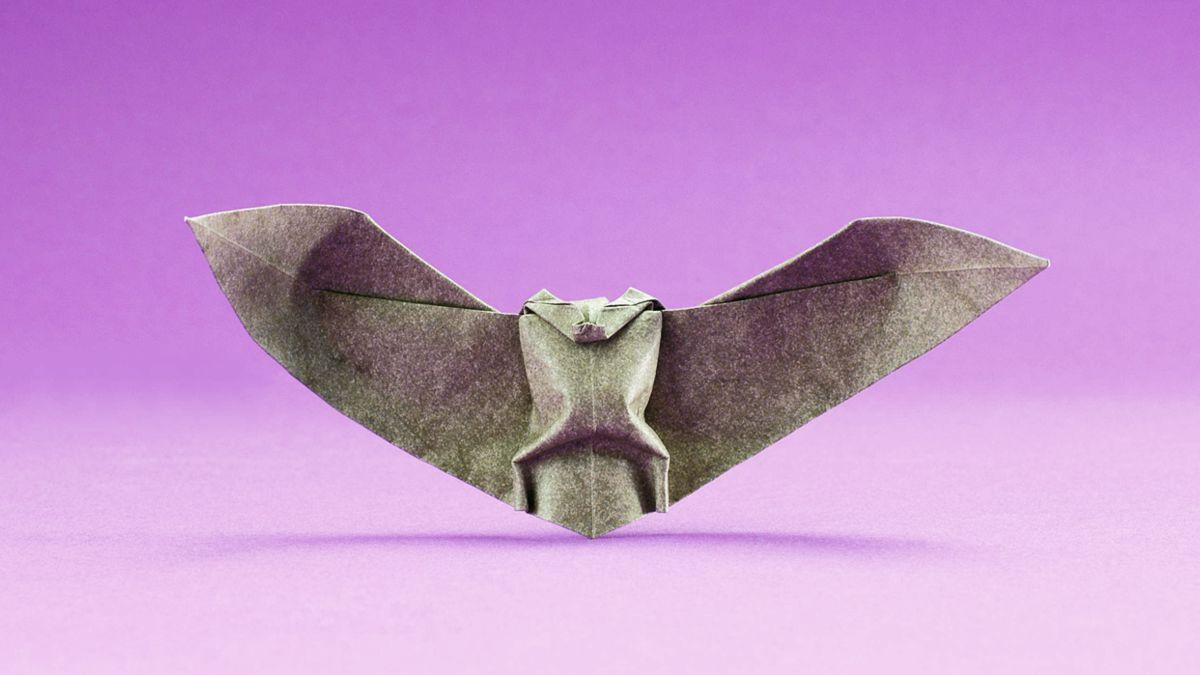 Activité Manuelle D'halloween : La Pipistrelle En Pliage avec Origami Chauve Souris