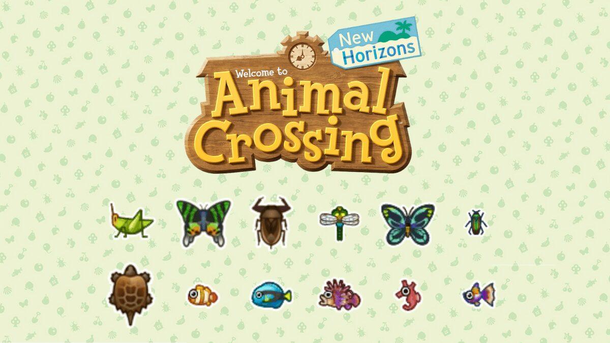 Animal Crossing New Horizons, Les Nouveaux Insectes Et dedans Les Noms Des Insectes