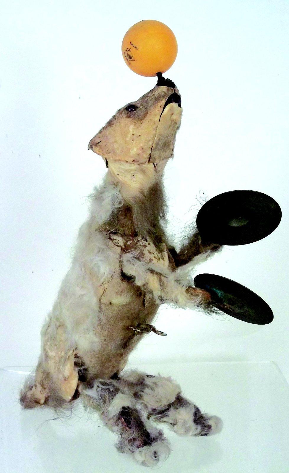 Auction -« Ours Savant » Jouet Mécanique Par Elie Martin… concernant Ours Savant