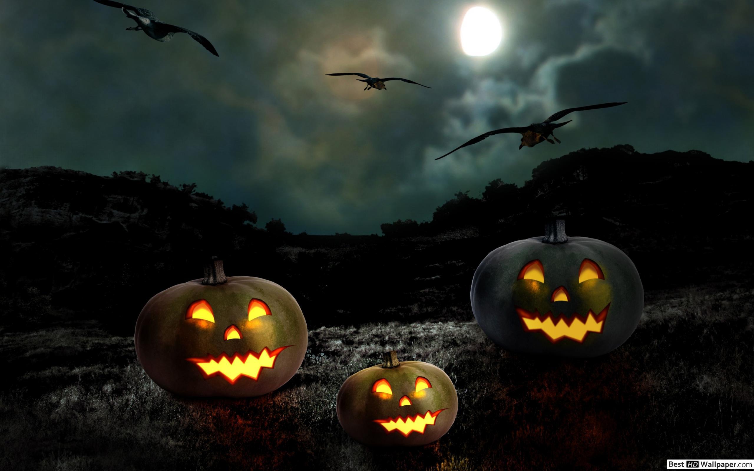 Citrouilles D'halloween Hd Fond D'écran Télécharger tout Photo De Citrouille D Halloween