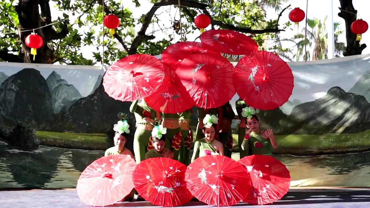 Clip Danse Des Ombrelles Spectacle Village Chinois Pantheres Club Cindy Yong dedans Spectacle Danse Chinoise