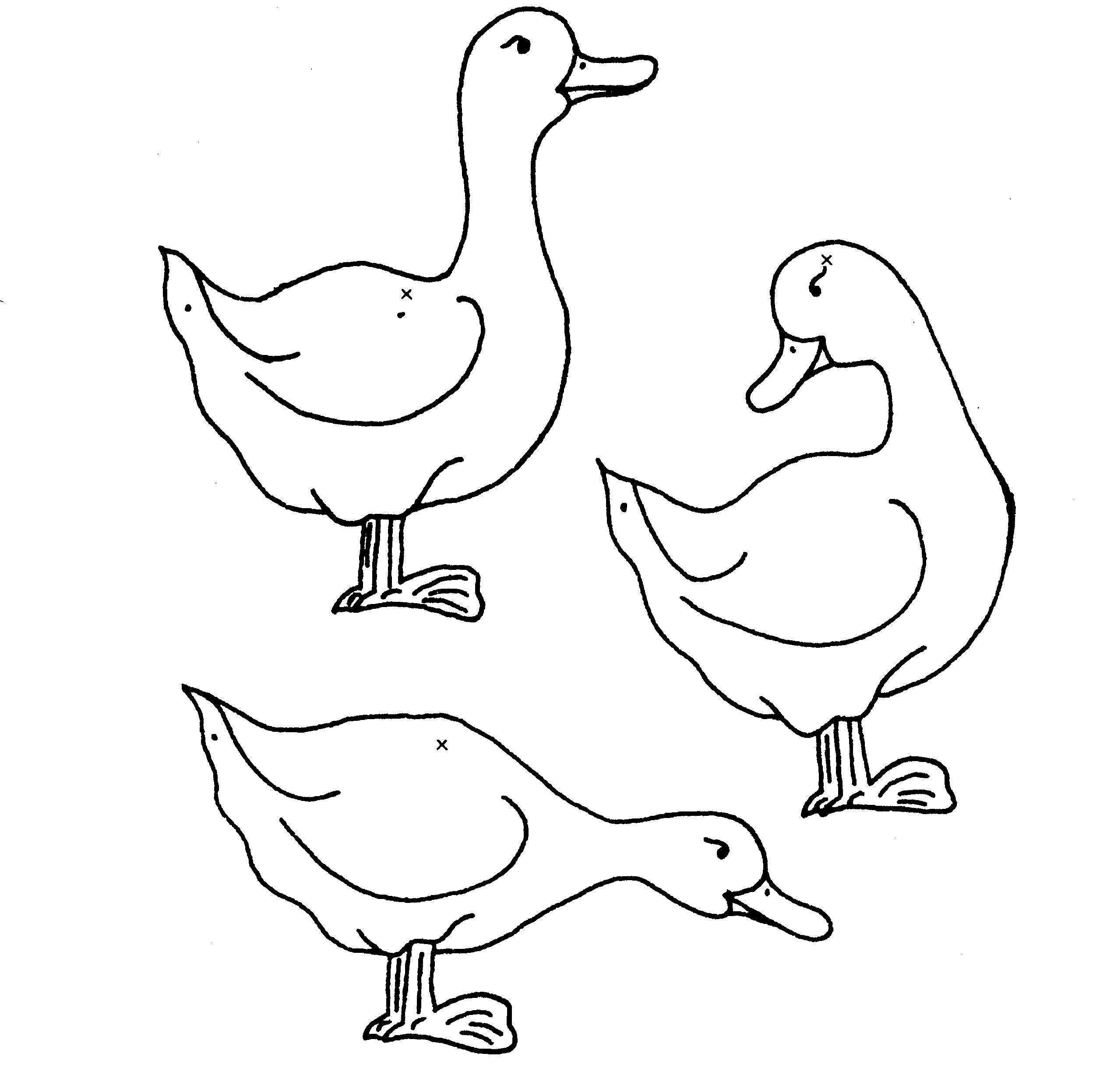 Coloriage Canards - Les Beaux Dessins De Nature À Imprimer destiné Masque Canard À Imprimer