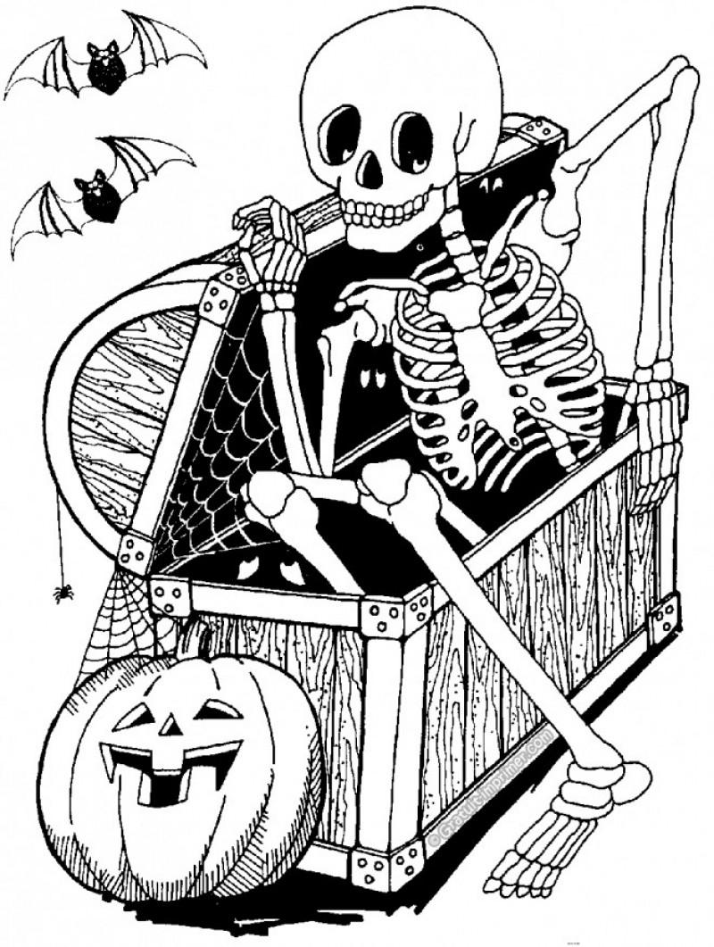 Coloriage Squelette #03 Avec Tête À Modeler avec Squelette A Imprimer