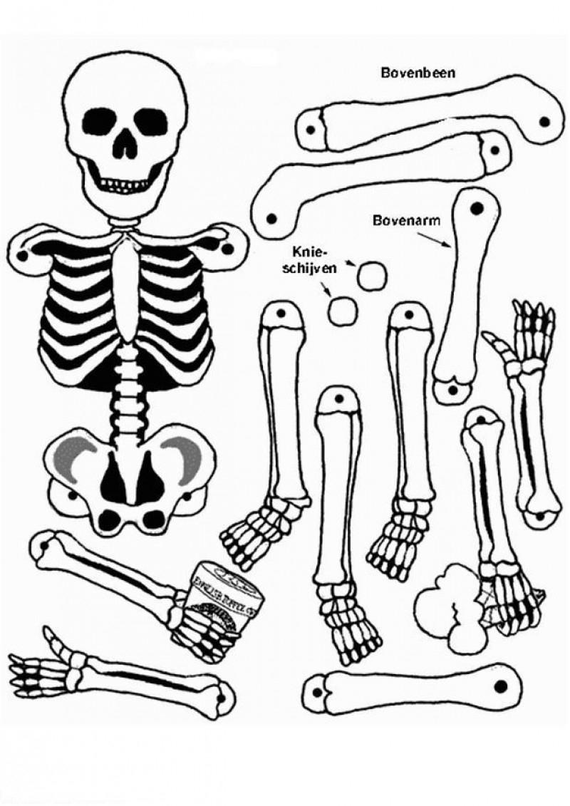 Coloriage Squelette #09 Avec Tête À Modeler tout Squelette A Imprimer