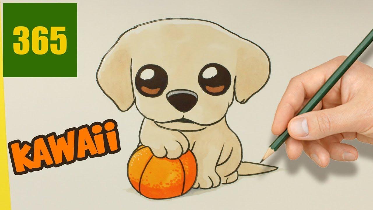 Comment Dessiner Un Chien Labrador Kawaii 🐶 Comment Dessiner Un Chiot Très  Kawaii avec Coloriage Labrador