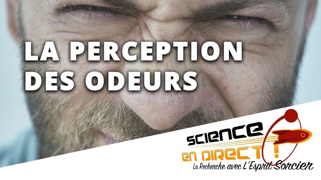 Comment Notre Nez Perçoit-Il Les Odeurs ? - Science En Direct serapportantà Odeur Dans Le Nez