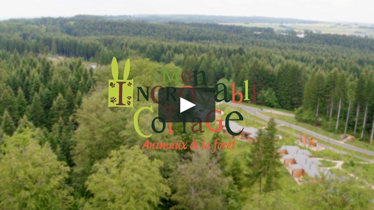 Cottage Animaux De La Forêt – Les Trois Forêts destiné Image D Animaux De La Foret