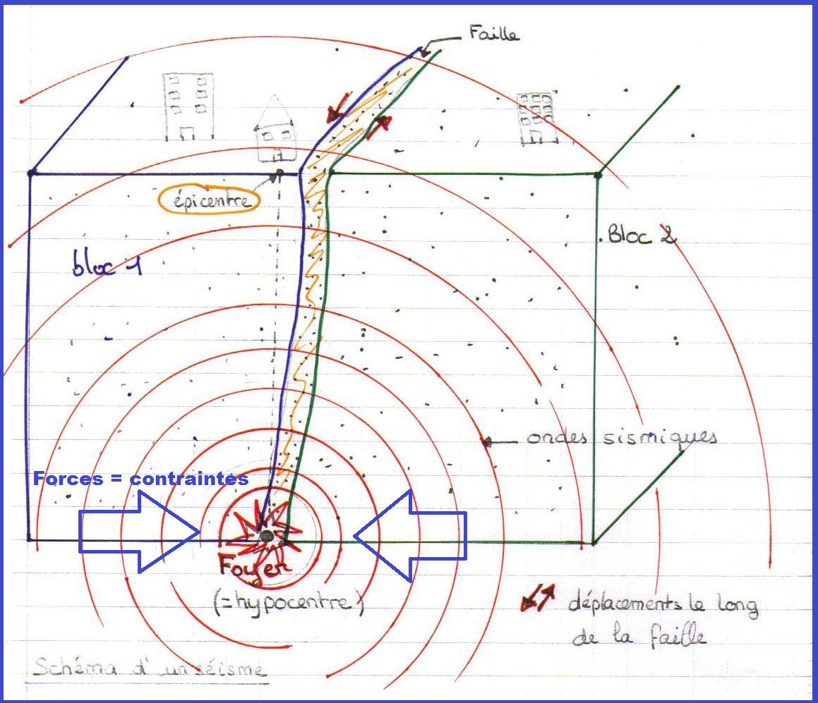 Cours De Svt | Vive Les Svt ! tout Leçon Respiration Cm1
