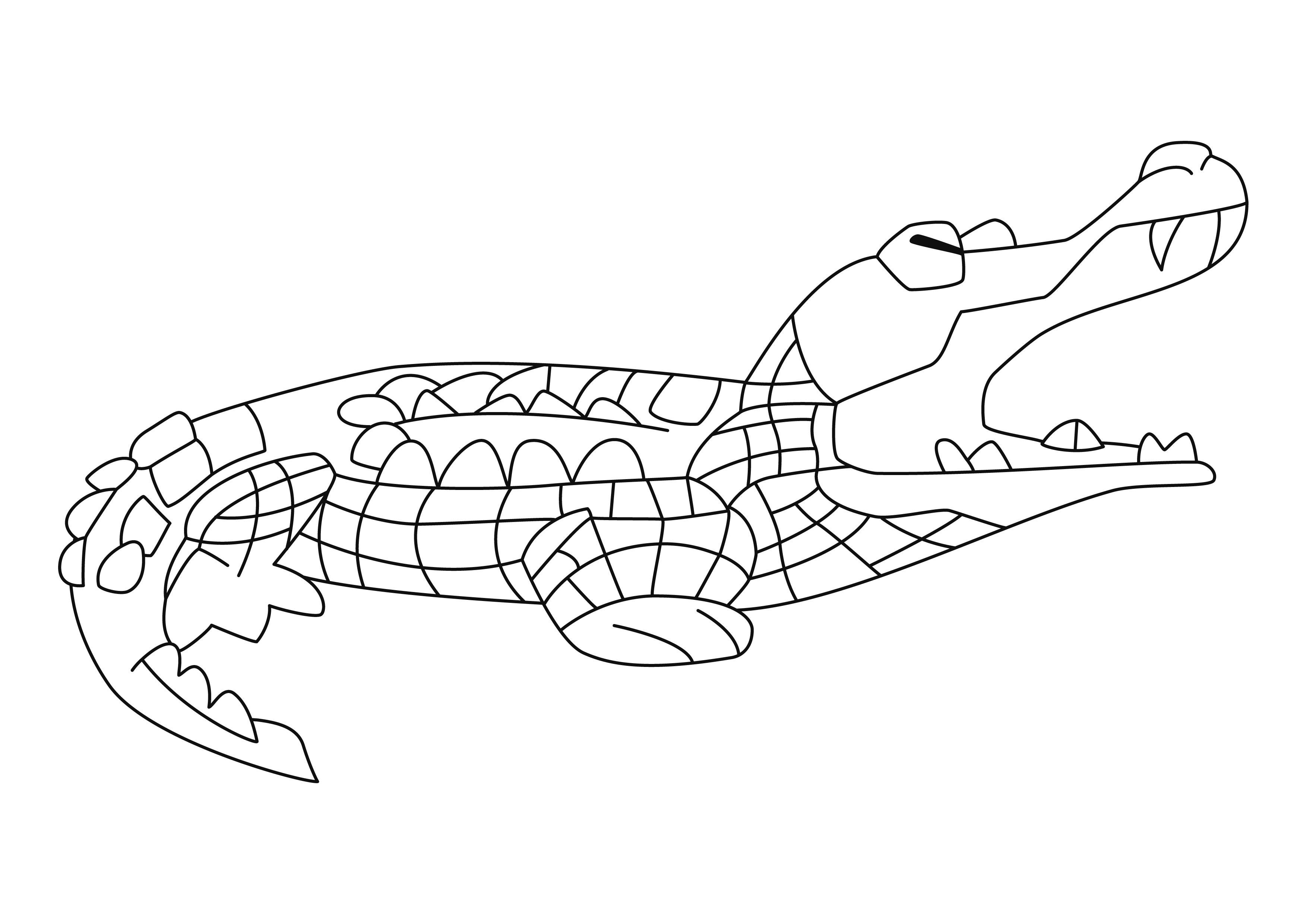 Crocodile 06 - Motif À Décorer pour Photo De Crocodile A Imprimer