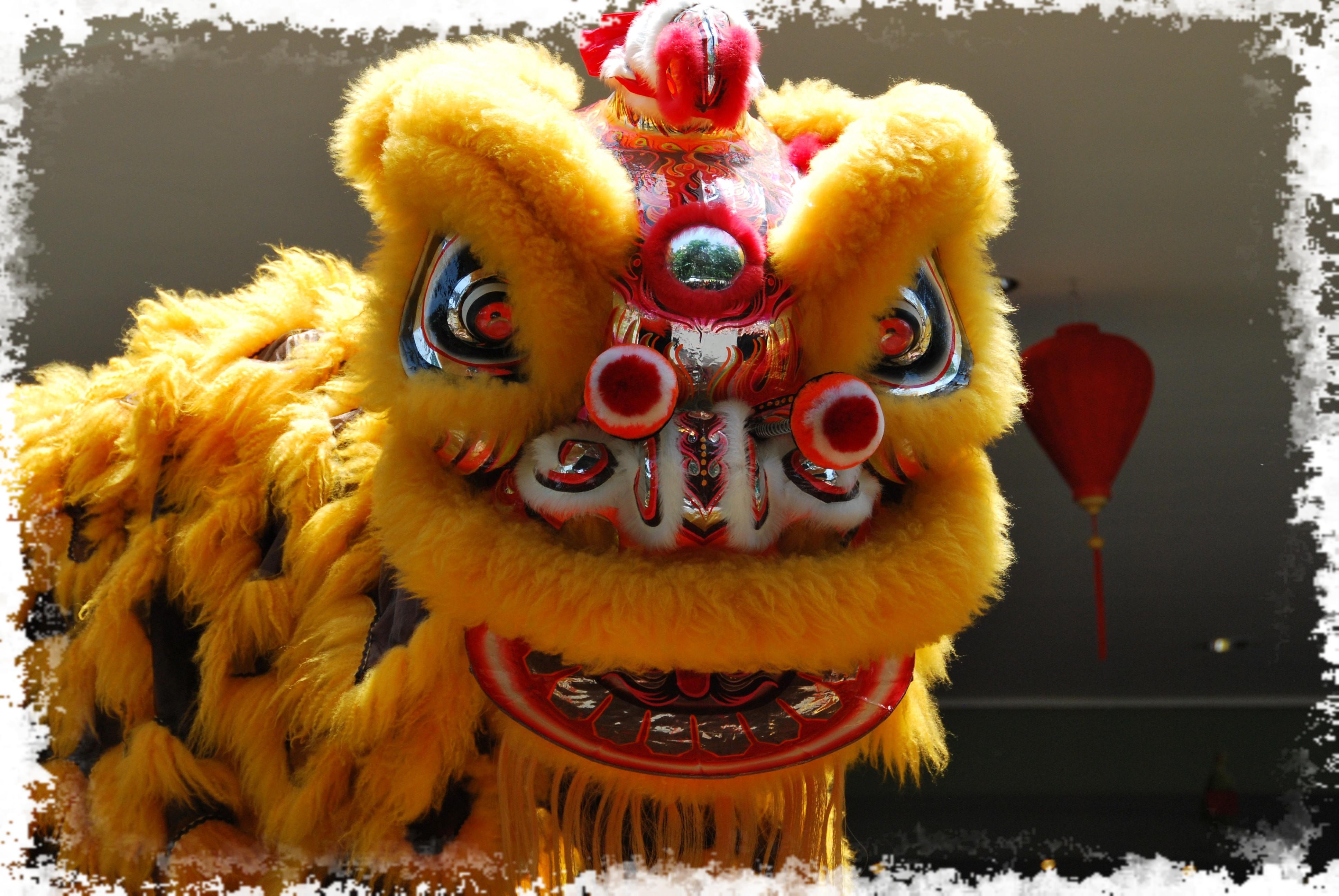 Danse Du Lion & Dragon pour Spectacle Danse Chinoise