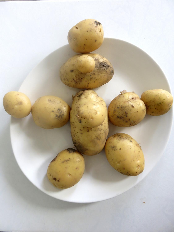 De Tout Et De Rien: On Garde La Patate à Chanson De La Patate