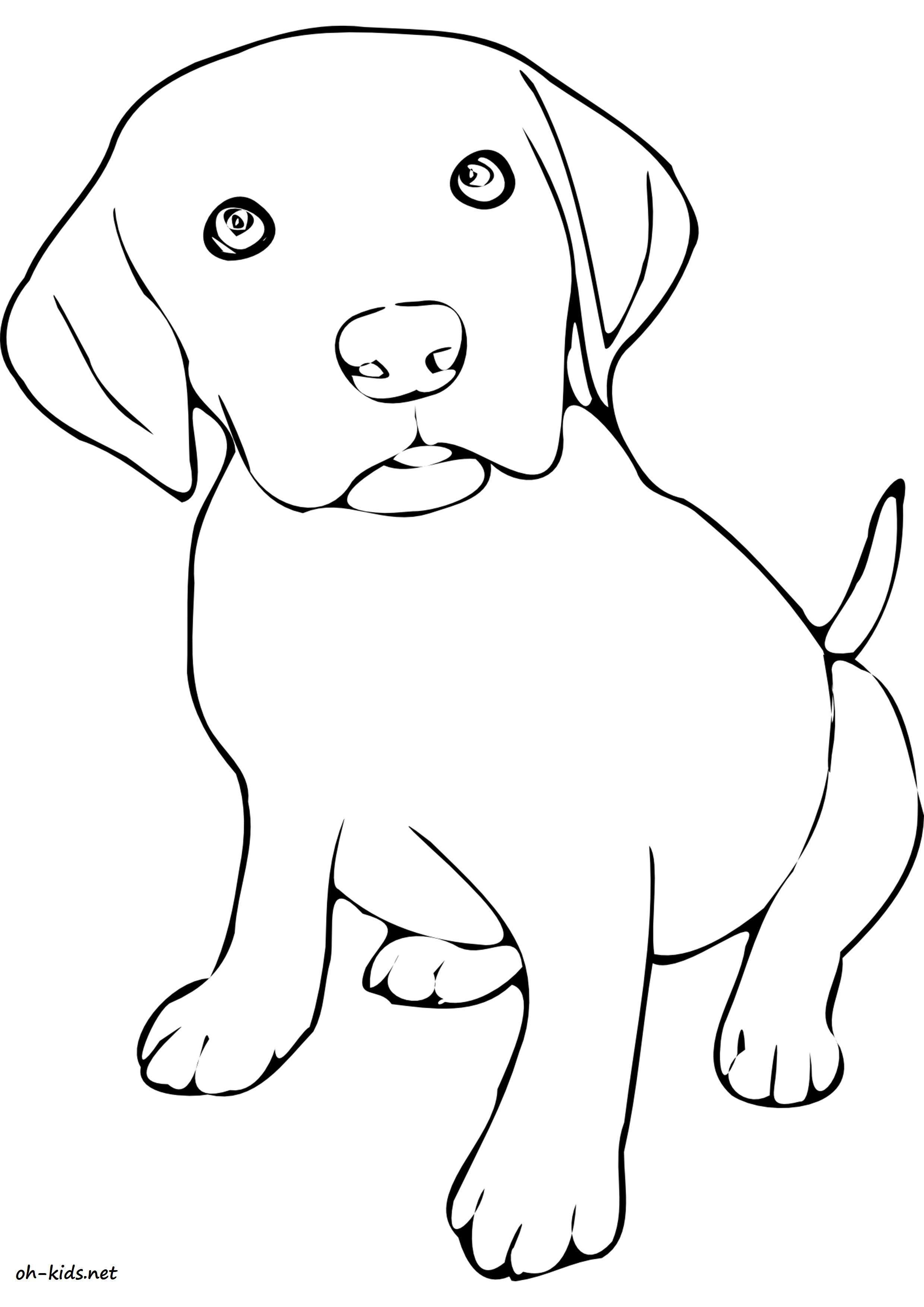 Dessin #1105 - Coloriage Labrador À Imprimer - Oh-Kids avec Coloriage Labrador