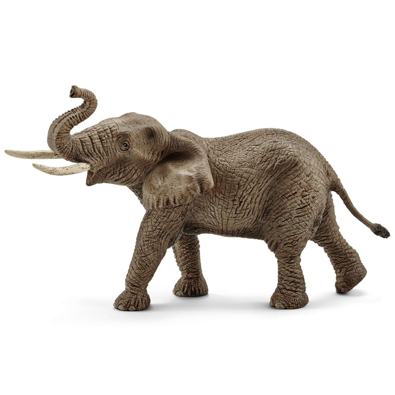 Détails Sur Schleich Africain Éléphant Mâle Pac Animaux Vie Sauvage Mer Zoo  Modèle Figurines serapportantà Animaux Sauvages De L Afrique
