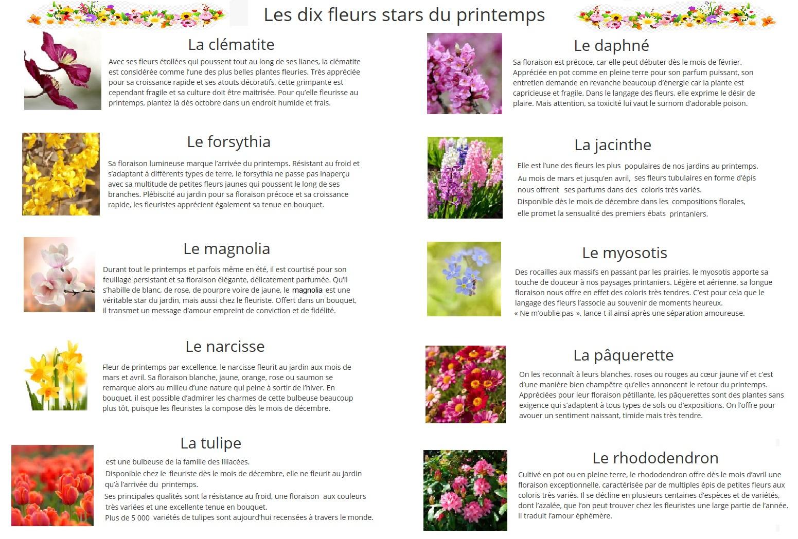 Dix Fleurs De Printemps pour Fleur Qui Pousse Au Printemps