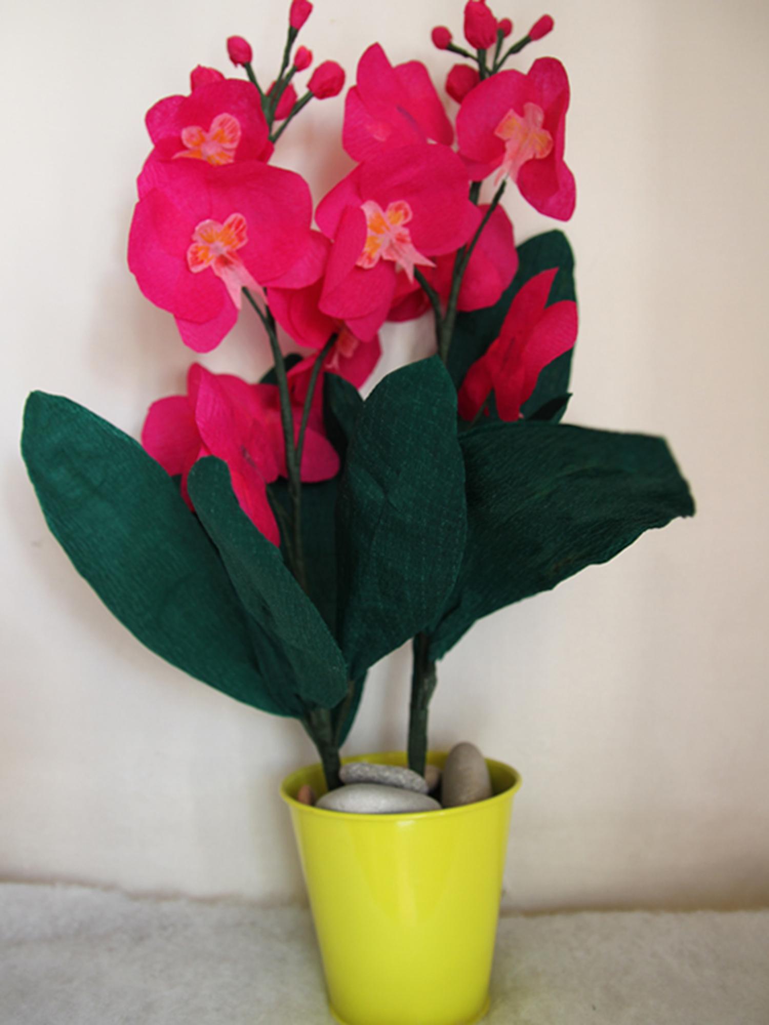 Diy Réalisation D'orchidées En Papier Crépon De Couleur Rose encequiconcerne Realisation Papier Crepon