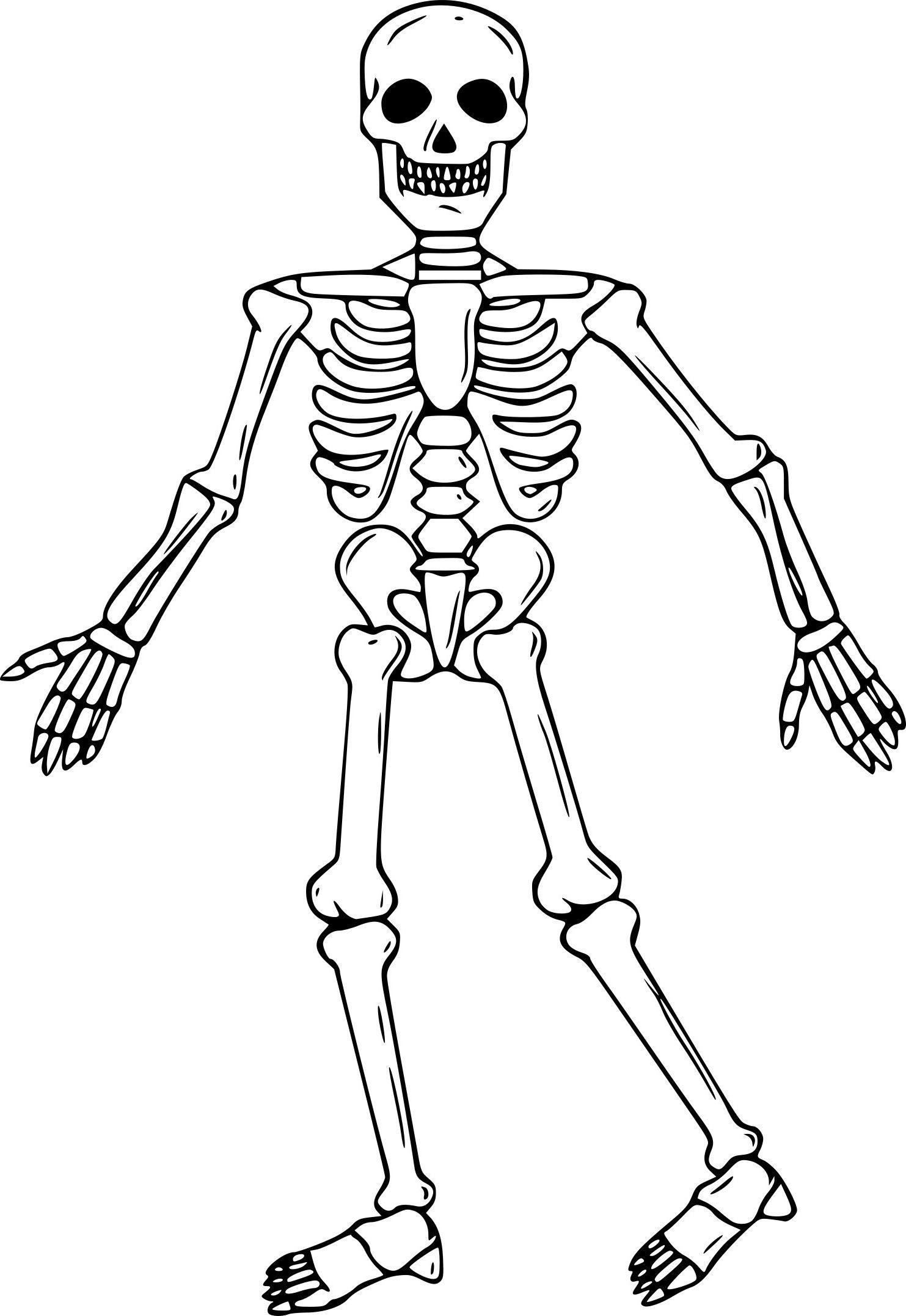 Épinglé Sur Stencils concernant Squelette A Imprimer