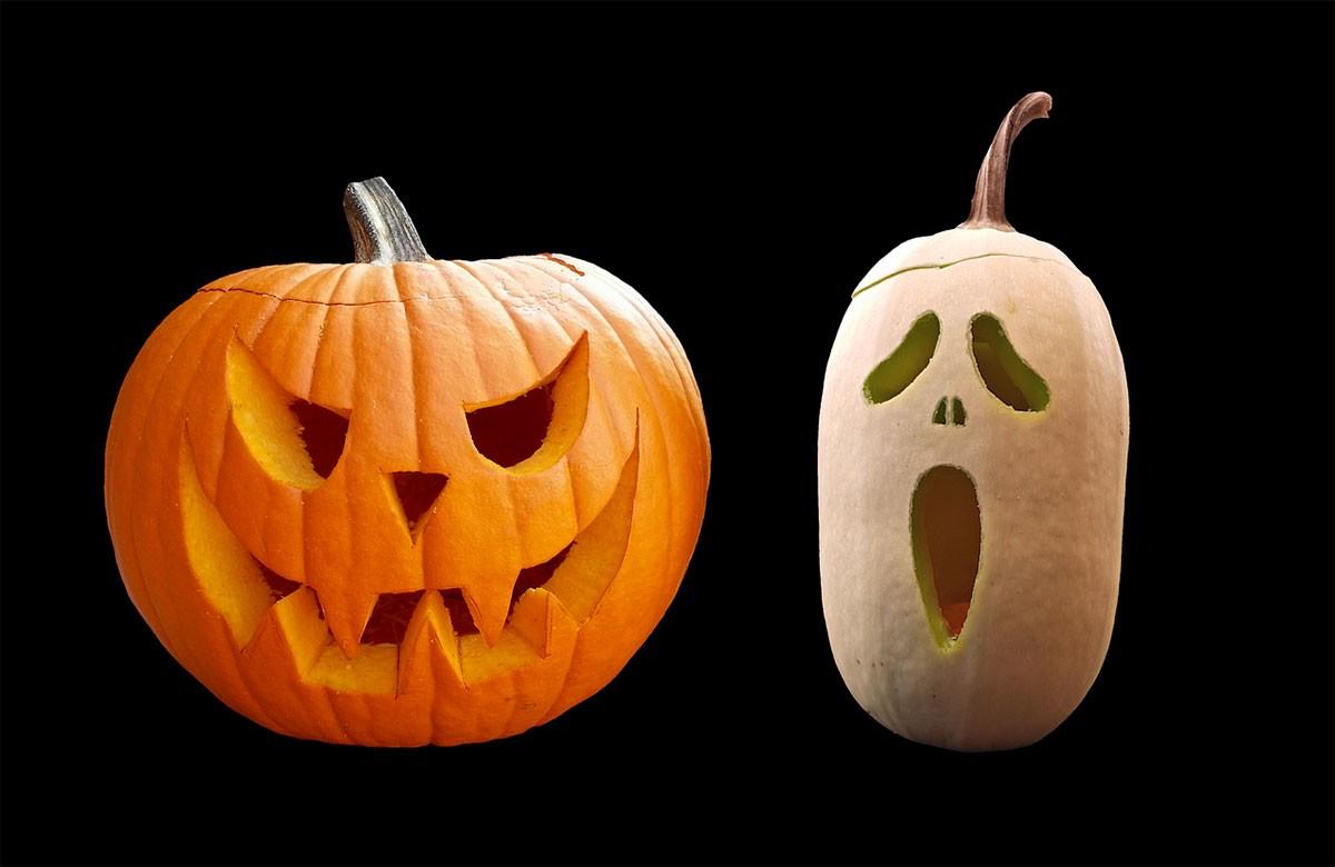 Faire Une Citrouille D'halloween - Blog Jardin avec Photo De Citrouille D Halloween