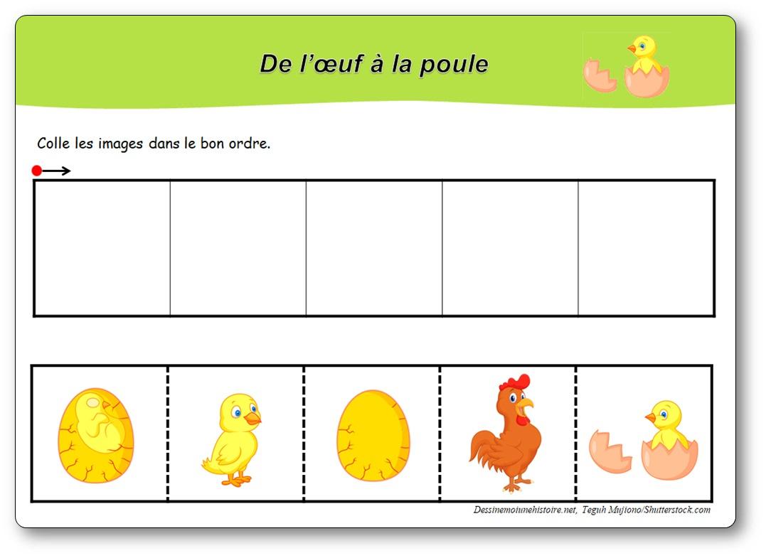 Images Séquentielles : De L'œuf À La Poule - avec Images Séquentielles Maternelle