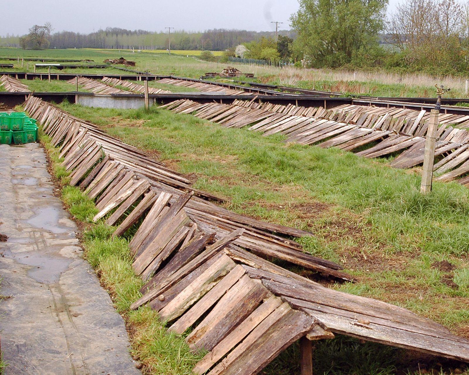Installation Des Parcs D'élevage - Le Blog Escargot.fr Et intérieur Elevage Escargot