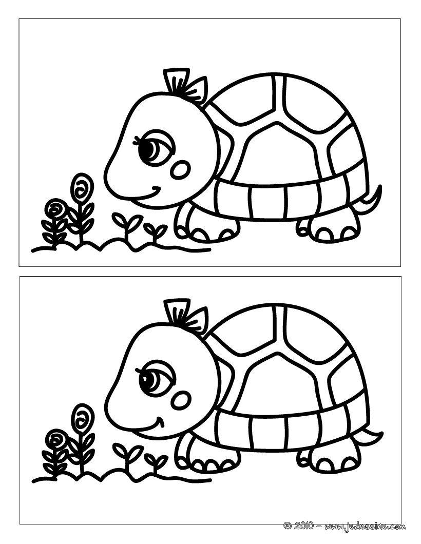 Jeu Des Différences : Tortue Fleur 5 Différences (Avec dedans Jeux De Différence