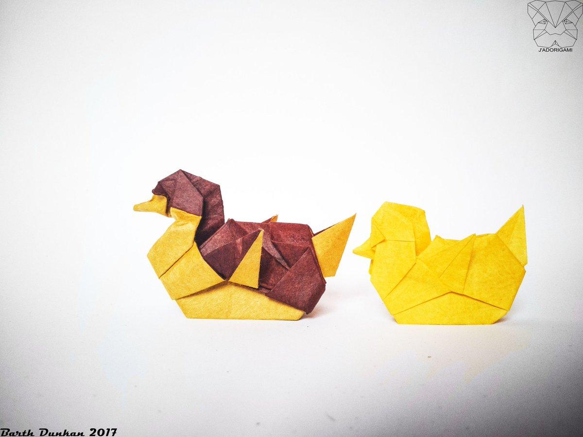 Kachna Hashtag On Twitter avec Origami Canard