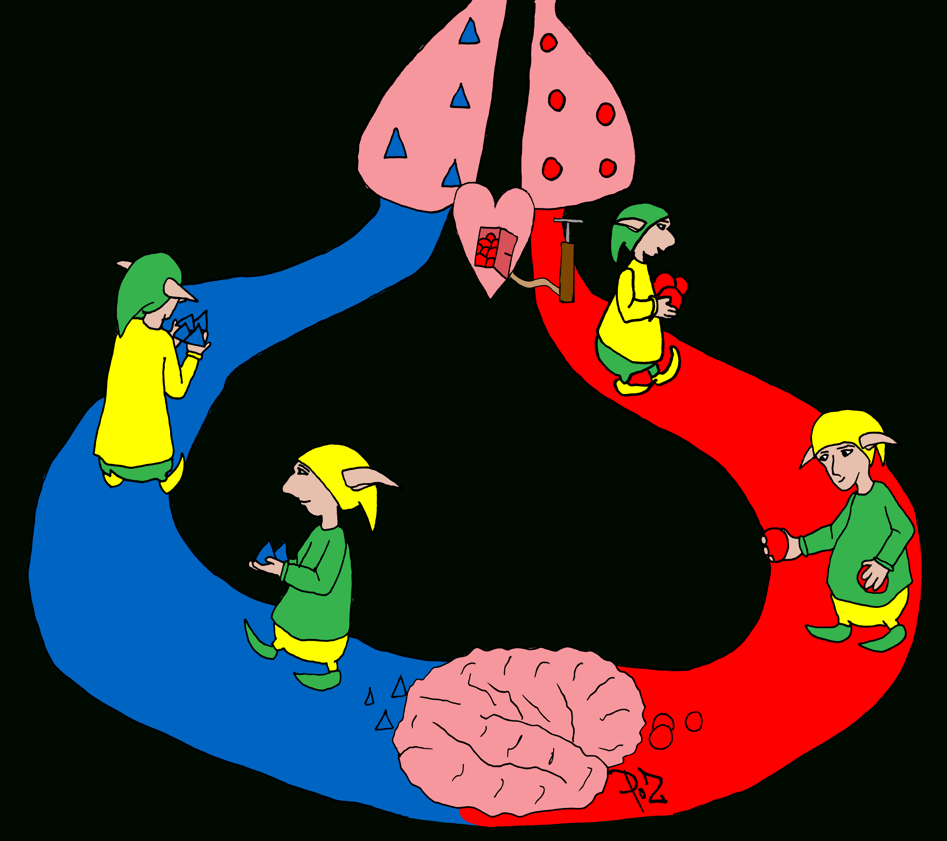 La Circulation Sanguine ~ La Classe Des Gnomes avec Leçon Respiration Cm1