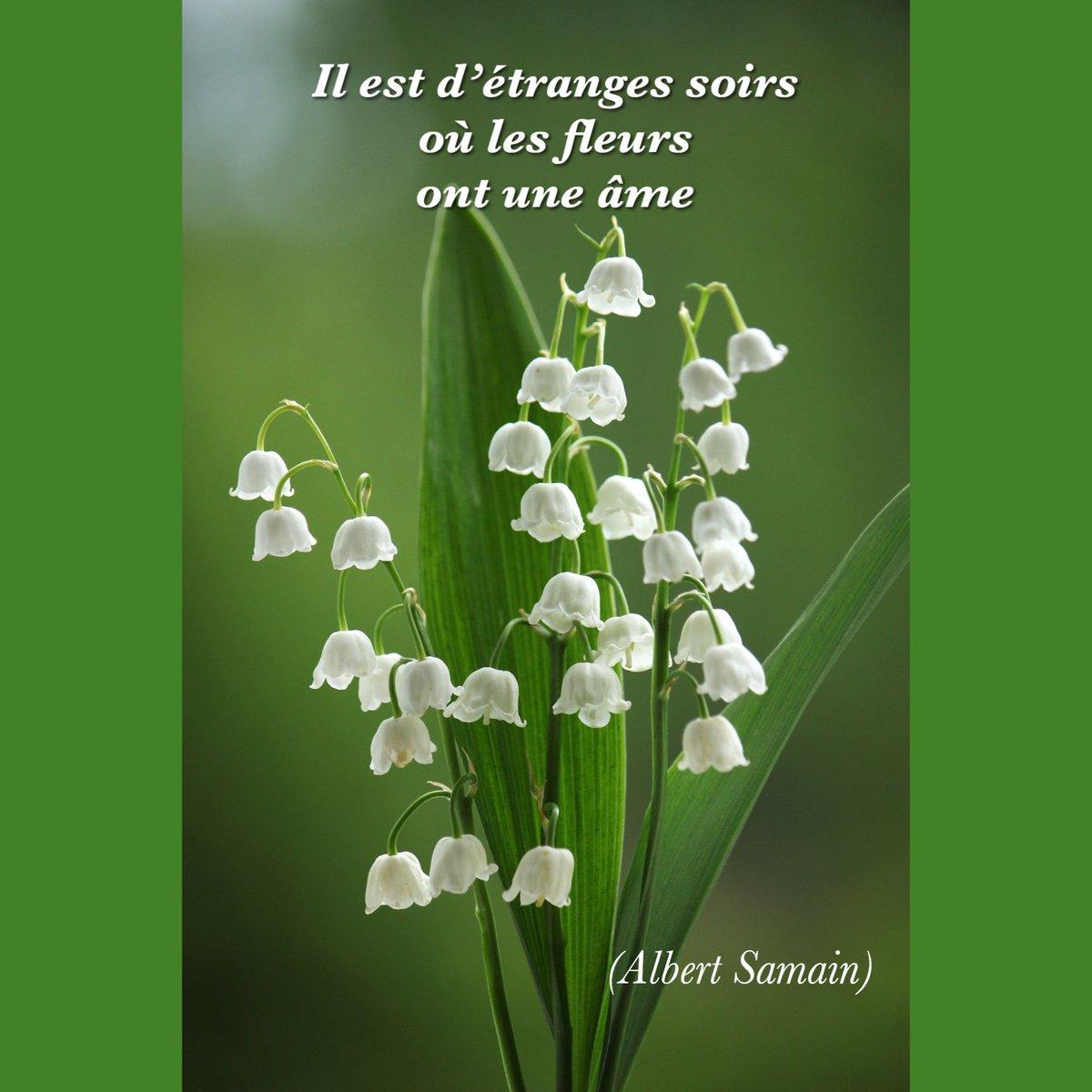 """Laury Auf Twitter: """"merci, Bonne Soirée.… """" encequiconcerne Bon The Bonheur"""