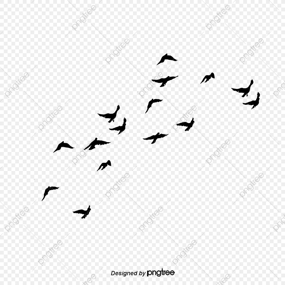 Le Vol D'oiseau, Voler, Le Ciel, Petit Oiseau Fichier Png Et pour Vol Petit Oiseau