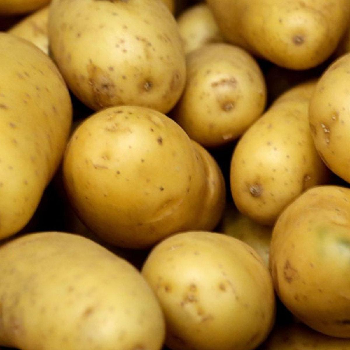 L'ère De La Patate (Chanson Avec Vos Commres) | Ohponyboy dedans Chanson De La Patate