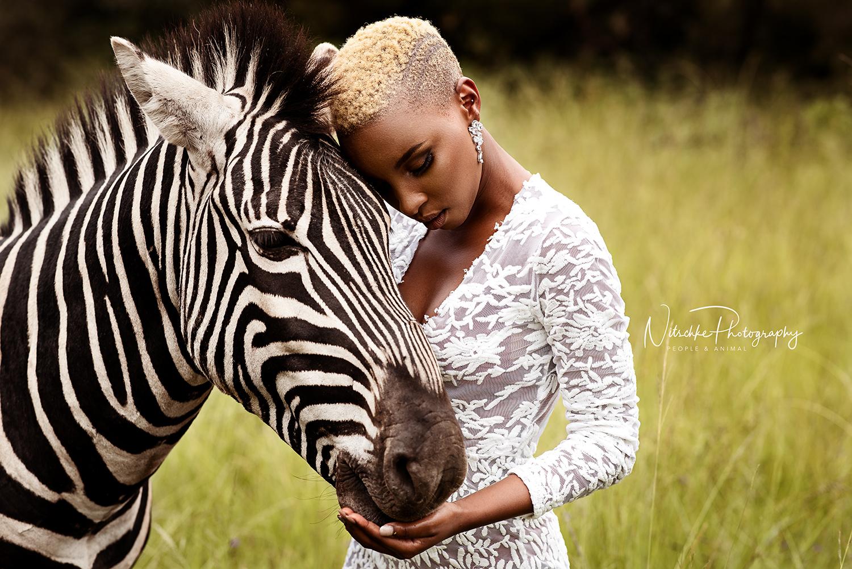 Les Animaux Sauvages De L'afrique Du Sud - Nitschke Photography pour Animaux Sauvages De L Afrique