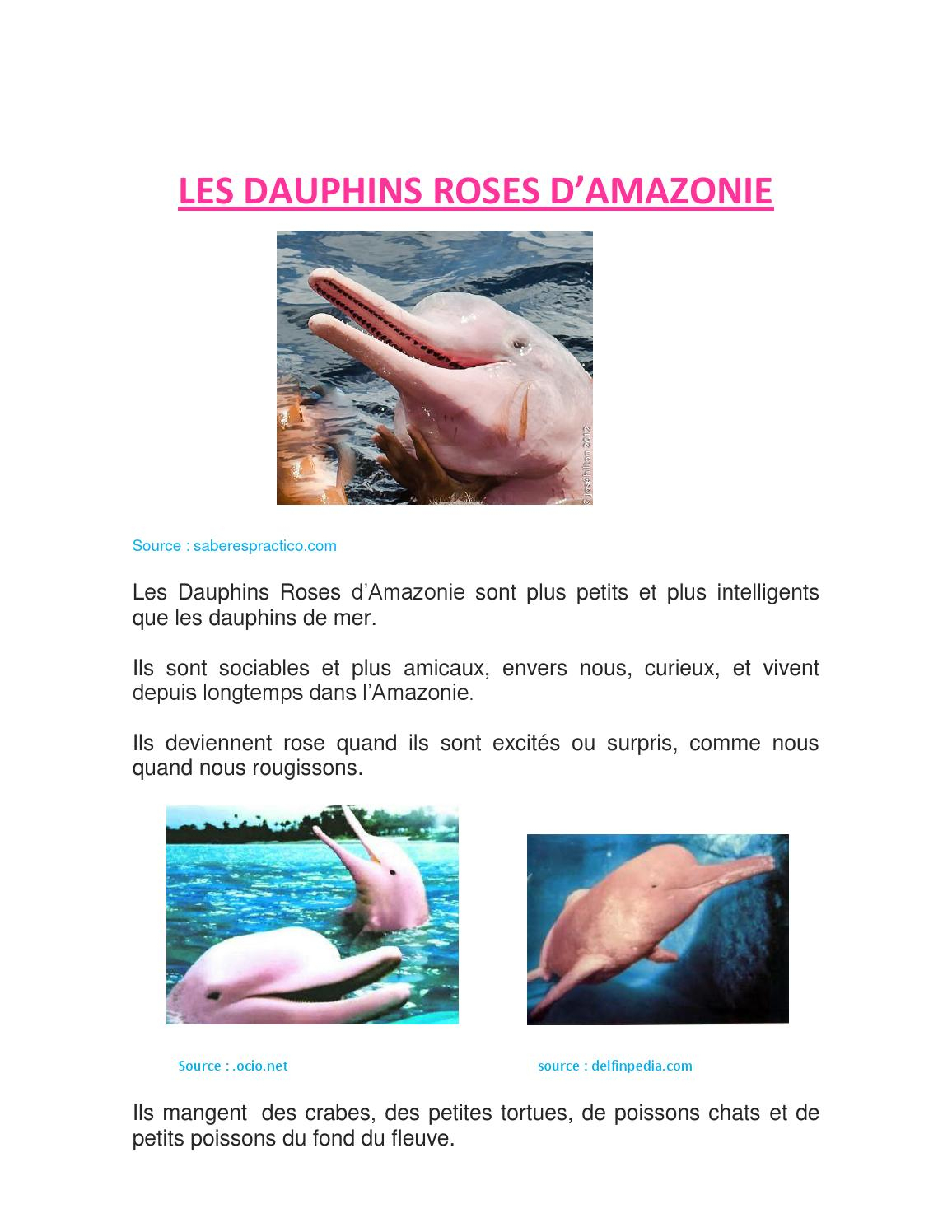 Les Dauphins Roses By Samagass - Issuu destiné Dauphin Amazonie