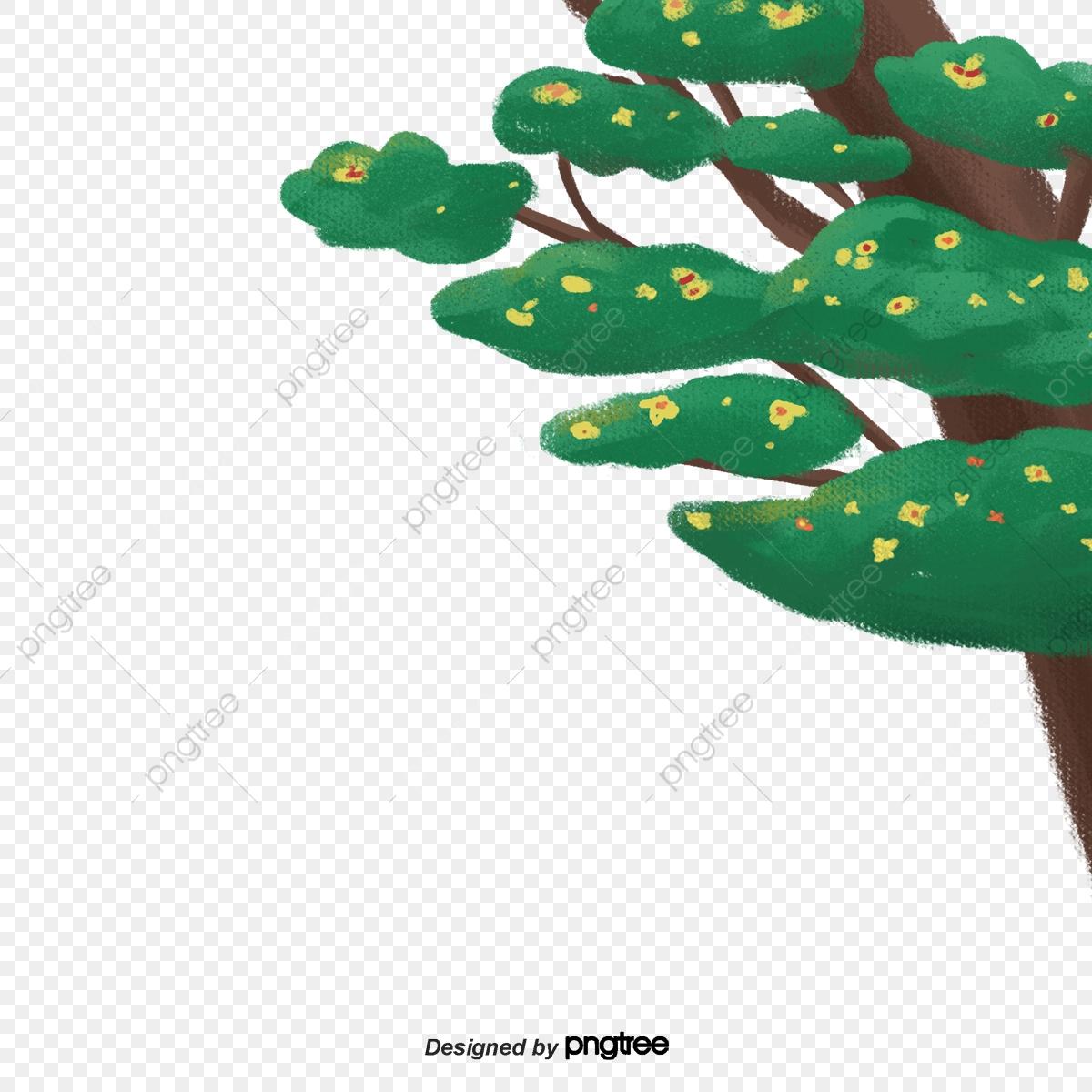 Les Pins Qui Poussent Au Printemps, Fleur, Printemps, Pine à Fleur Qui Pousse Au Printemps