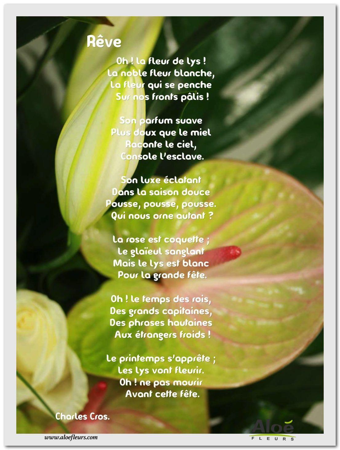 Les Poèmes De Fleurs En Images Par Aloé Fleurs | Fleurs dedans Poeme Les Fleurs
