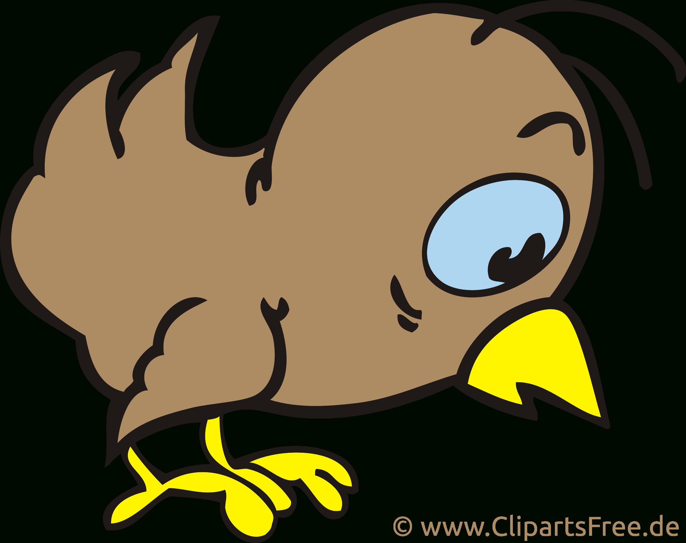 Oiseau Image Gratuite – Ferme Clipart - Ferme Dessin destiné Images D Oiseaux Gratuites