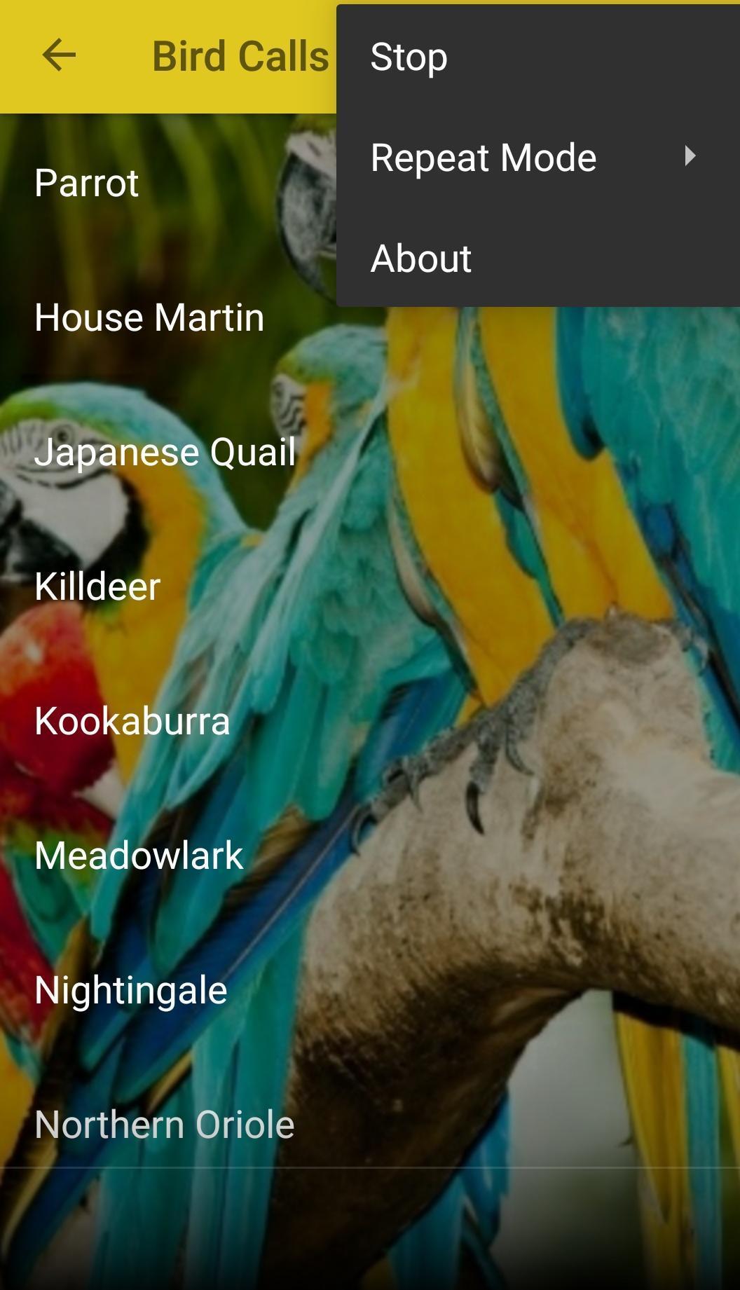 Oiseau Sons Gratuit Pour Android - Téléchargez L'apk serapportantà Images D Oiseaux Gratuites