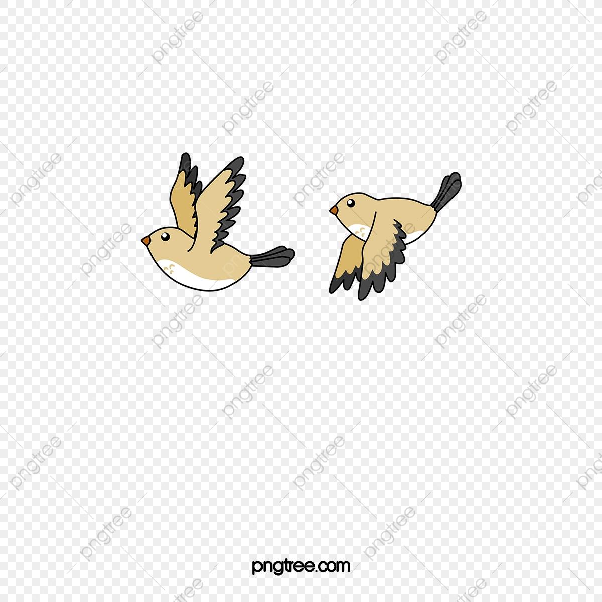 Oiseau Vol D'oiseau, Petit Oiseau, Animal, Volaille Fichier serapportantà Vol Petit Oiseau
