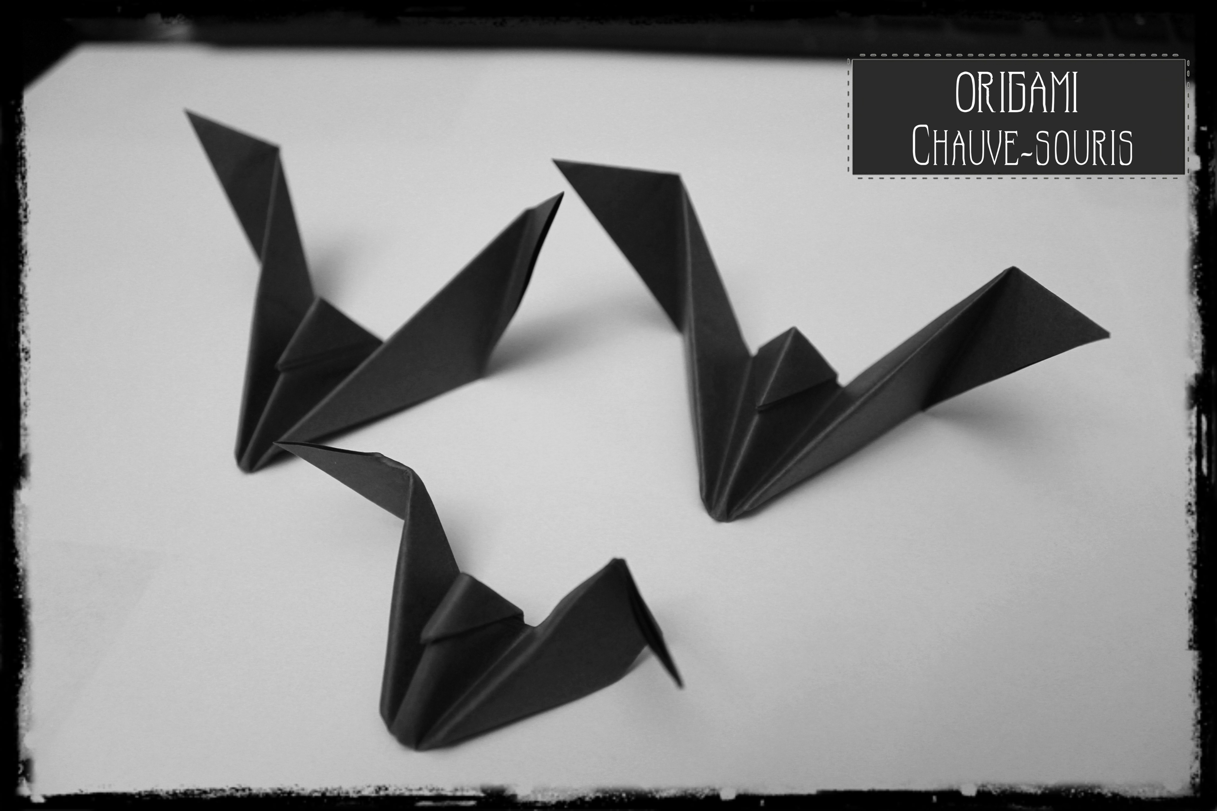 Origami Chauve-Souris   Les Secrets D'aurélia intérieur Origami Chauve Souris