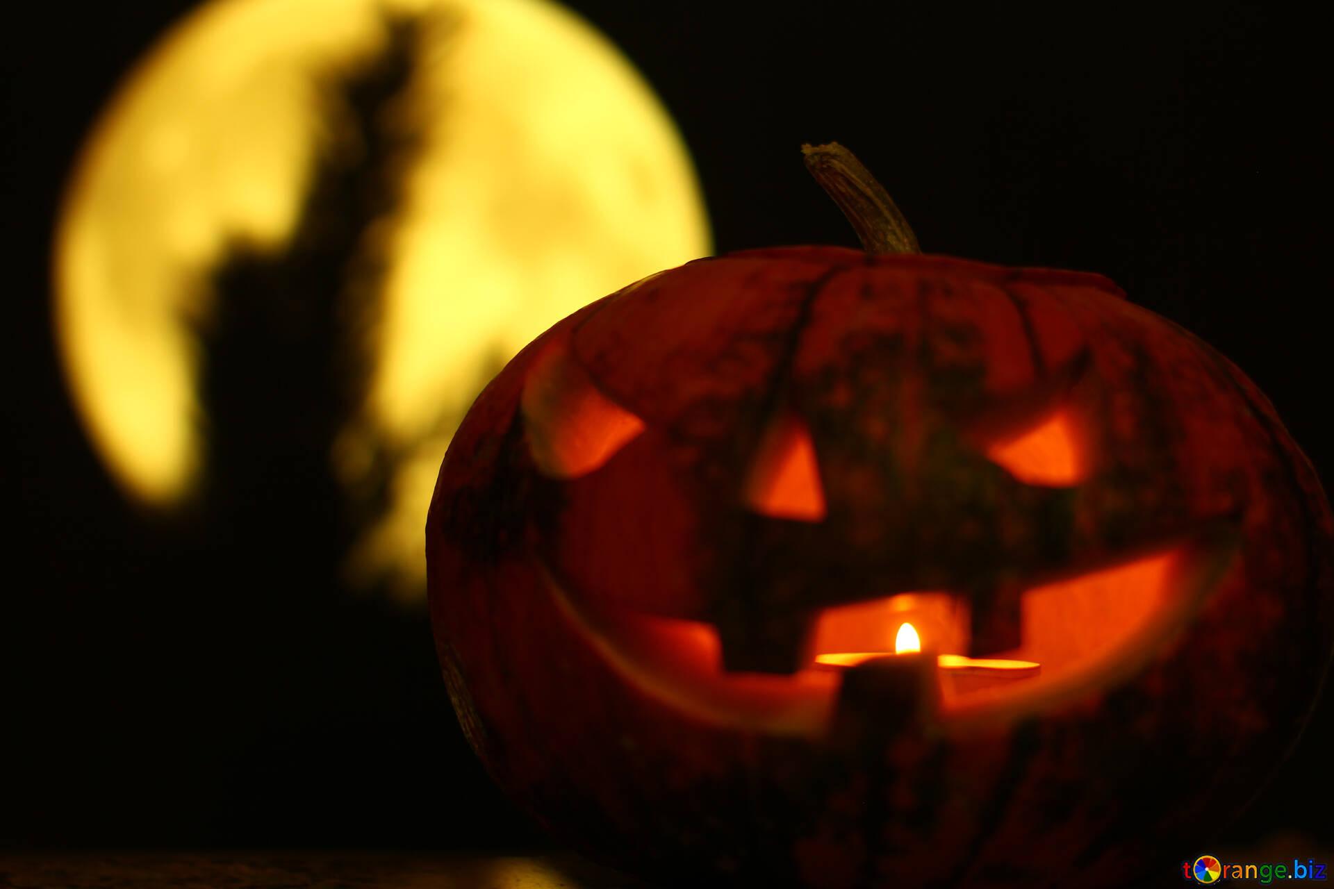Origines D'halloween Citrouille D'halloween Sur Un Fond De destiné Photo De Citrouille D Halloween