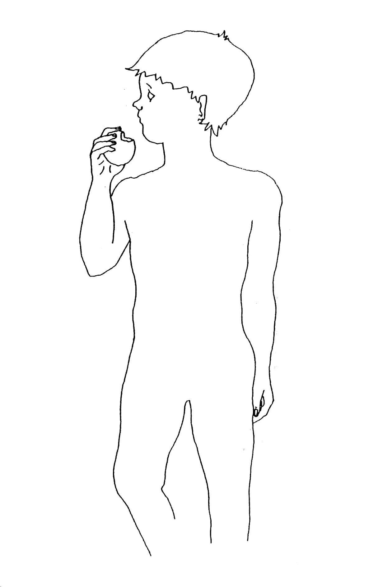 Sciences Ce2 ♢ Alimentation Et Digestion ~ Cartable D'une avec Leçon Respiration Cm1