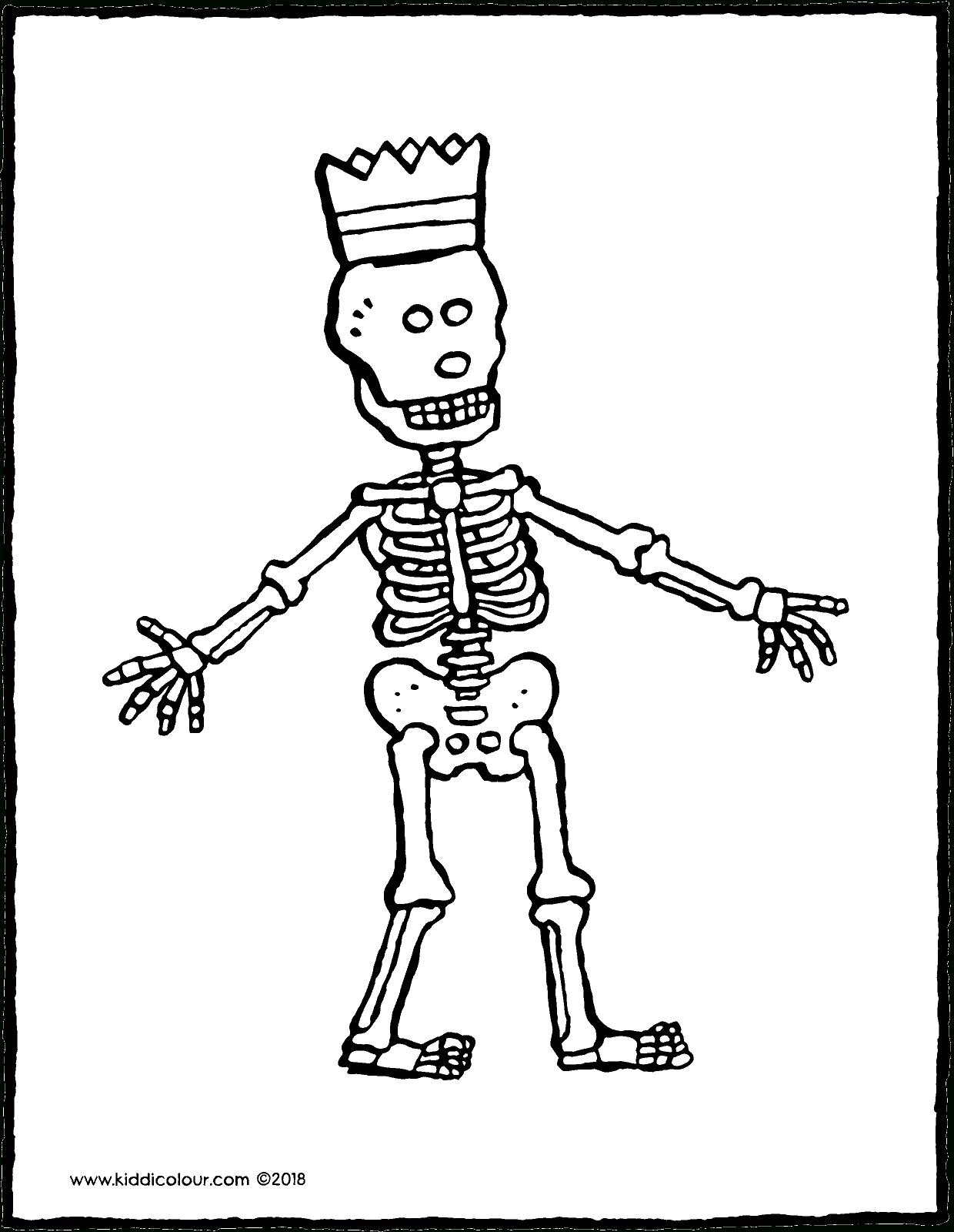 Squelette - Kiddicoloriage intérieur Squelette A Imprimer