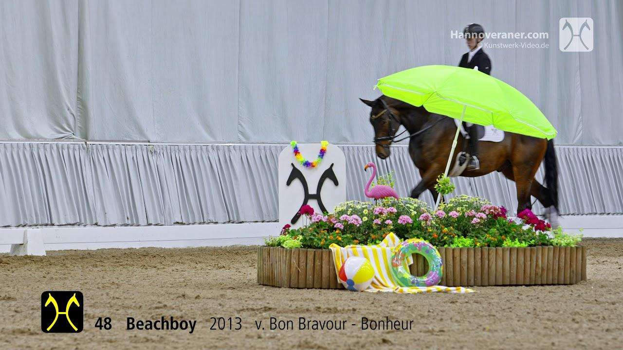 Verden Auction On July 13/14-No.48 Beachboy By Bon Bravour-Bonheur dedans Bon The Bonheur