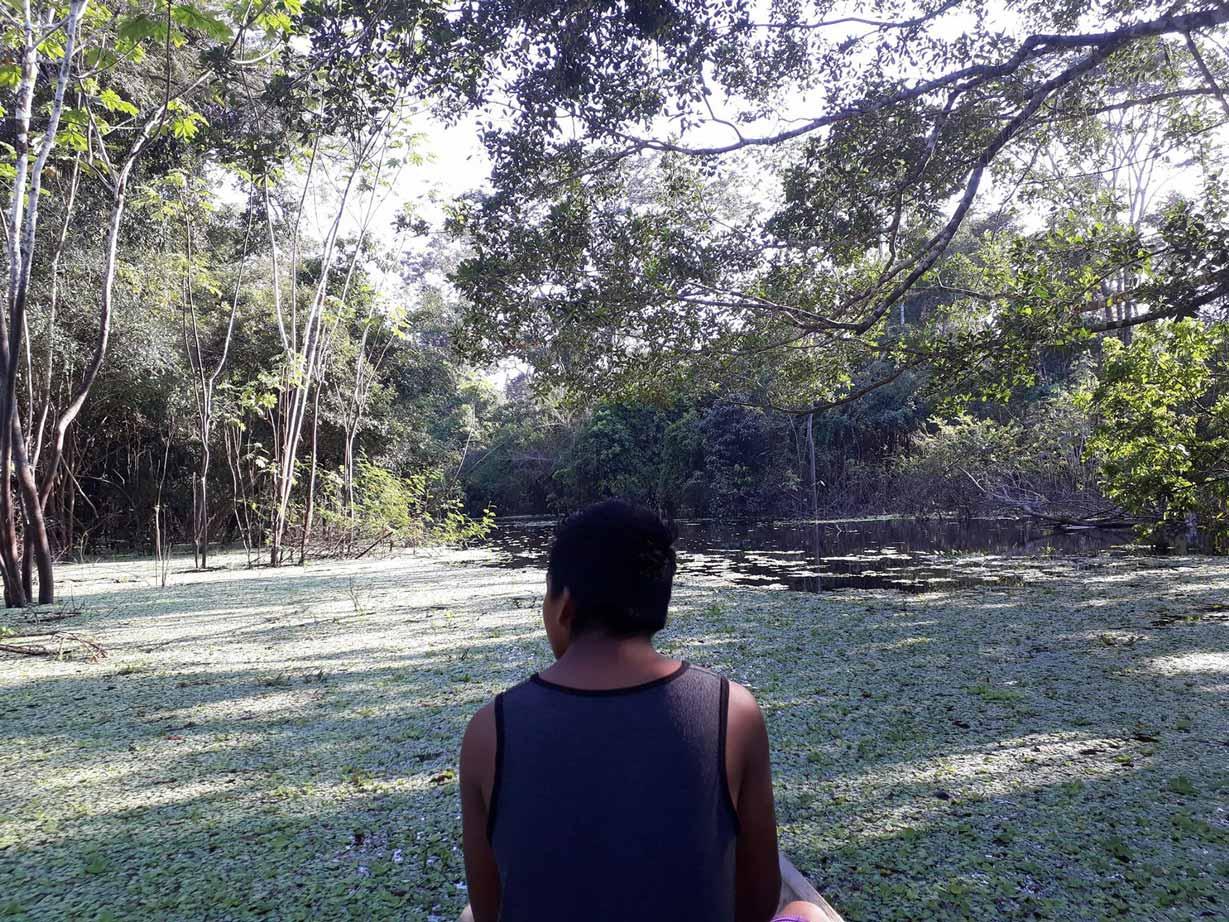 Voyage En Amazonie Péruvienne - Globe Cro'coeur serapportantà Dauphin Amazonie