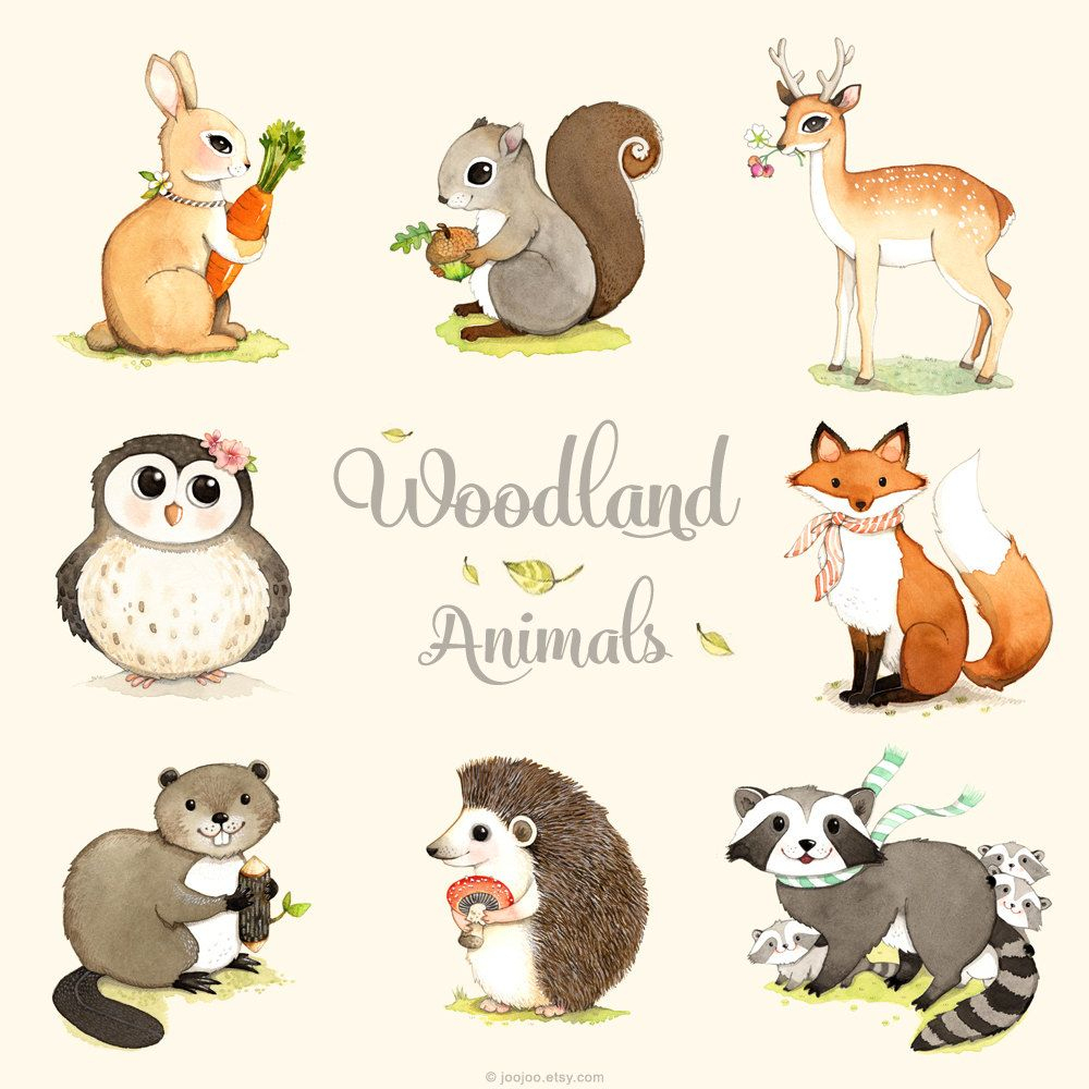 Woodland-Tiere Zu Drucken Satz Wald Waldtiere Woodland Von destiné Image D Animaux De La Foret