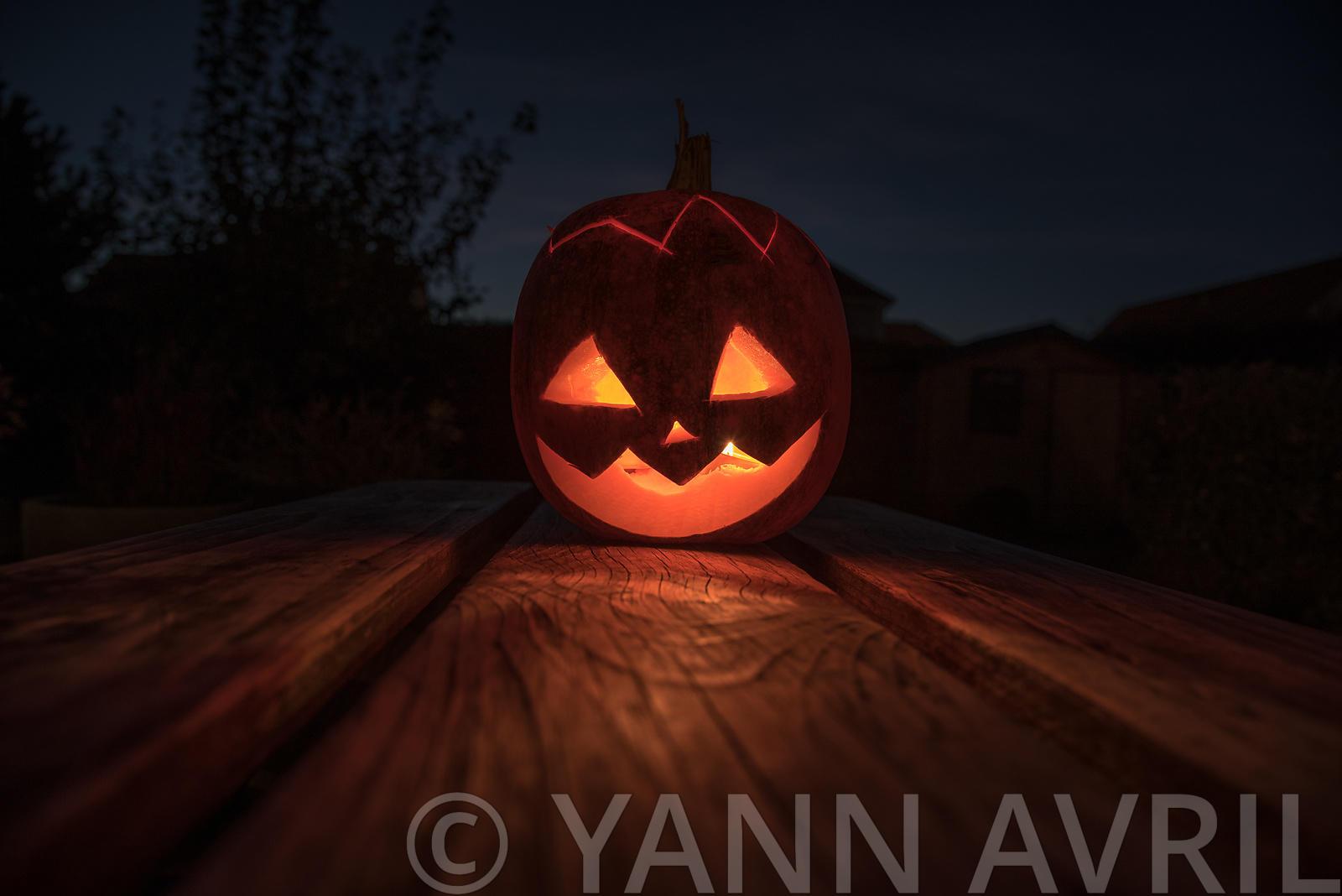 Yann Avril Photography | Garden And Nature Citrouille D pour Photo De Citrouille D Halloween