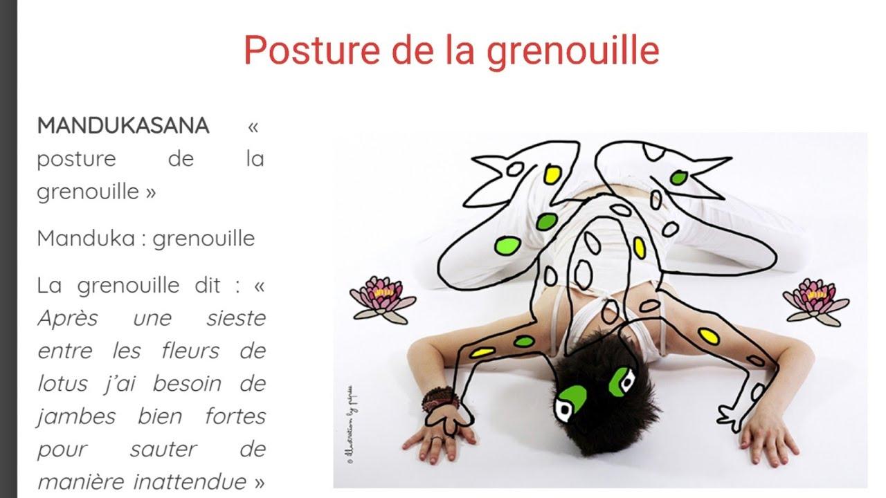 Yoganimaux - La Posture De La Grenouille - pour La Grenouille Meditation