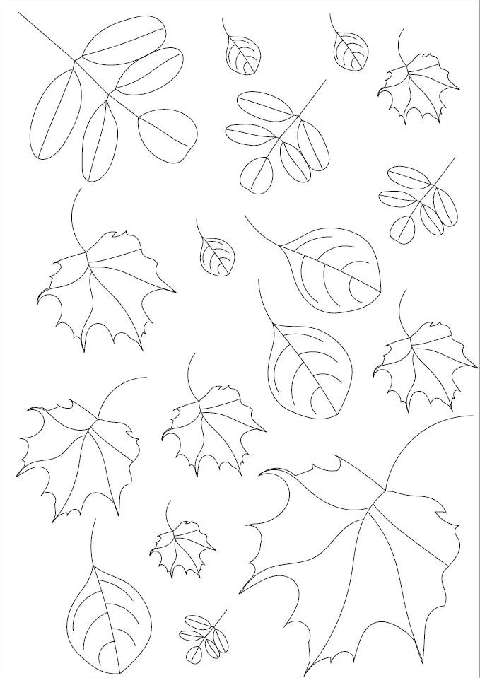 Automne : Coloriage Des Feuilles D'automne À Imprimer avec Feuille D Érable Dessin